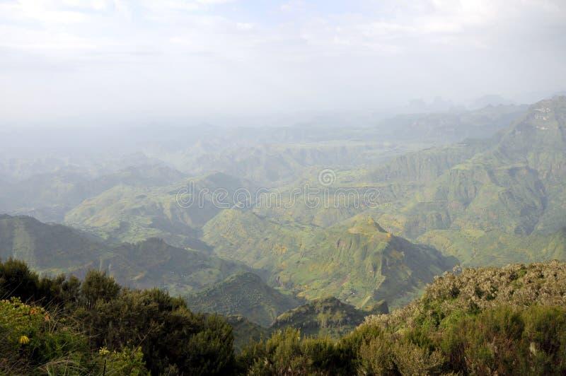 Парк горы Simien стоковые изображения