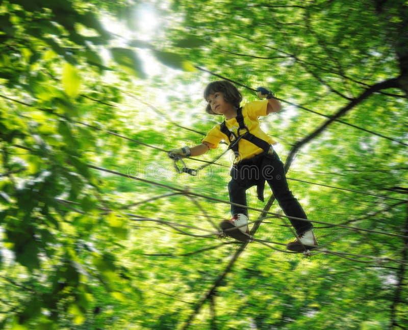 парк девушки приключения стоковое изображение