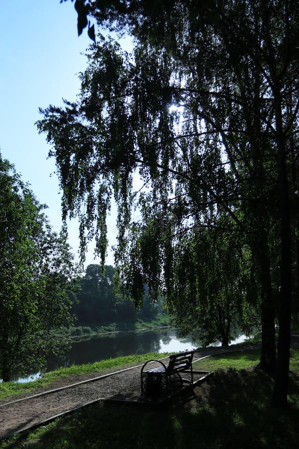 Парк лета с стендом стоковая фотография rf