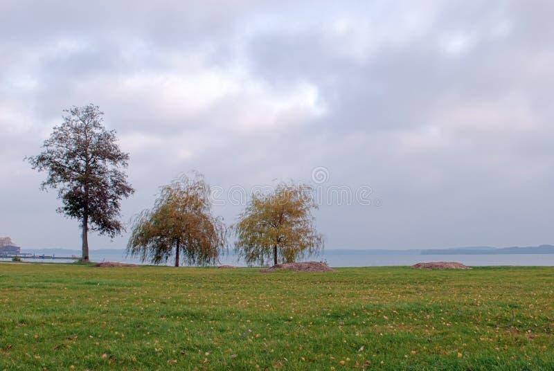 Парк замка Шверина, Германия стоковая фотография
