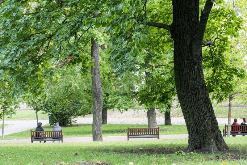 Парк замка Spilberg - Брно стоковое фото