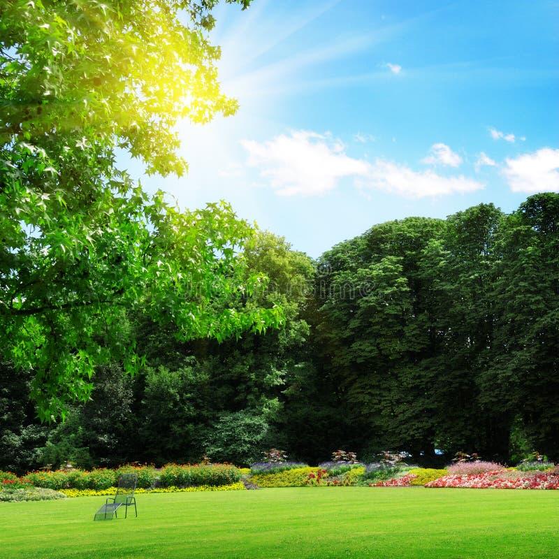 Парк и лужайка воссоздания стоковые фото