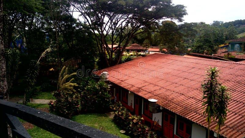 Парк кофе & x28; colombia& x29; стоковое изображение