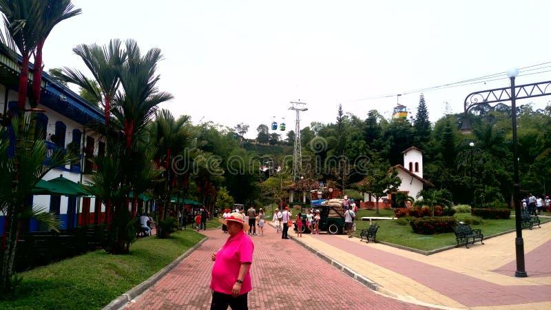 Парк ( кофе; colombia) стоковые изображения