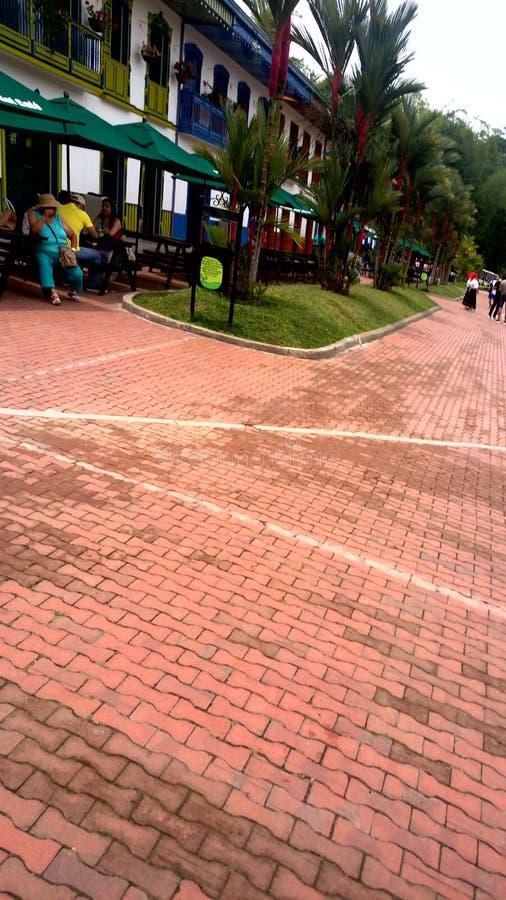Парк кофе & x28; colombia& x29; стоковые изображения rf
