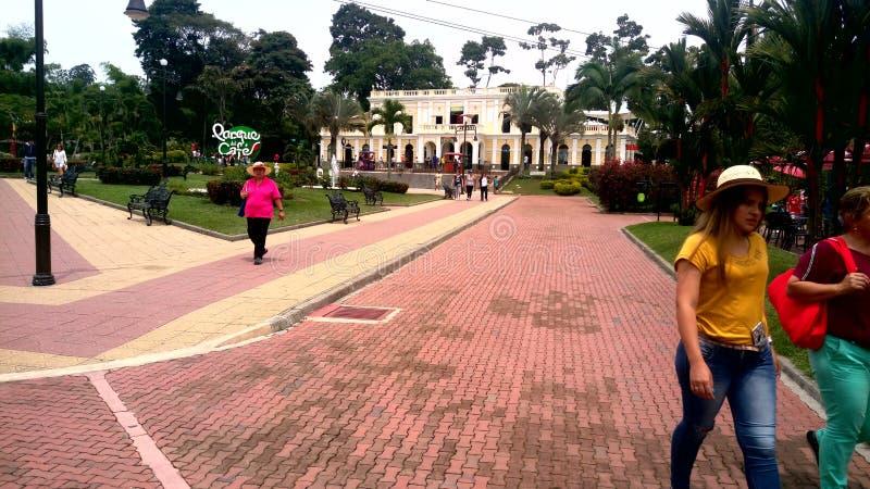 Парк ( кофе; colombia) стоковое изображение