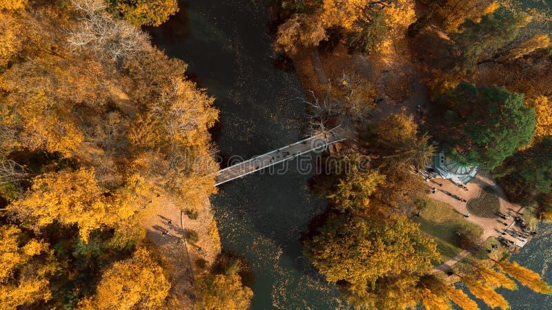 Парк ландшафта осени вида с воздуха стоковые изображения rf