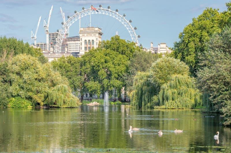 Парк Лондона с глазом Лондона на заднем плане стоковое изображение