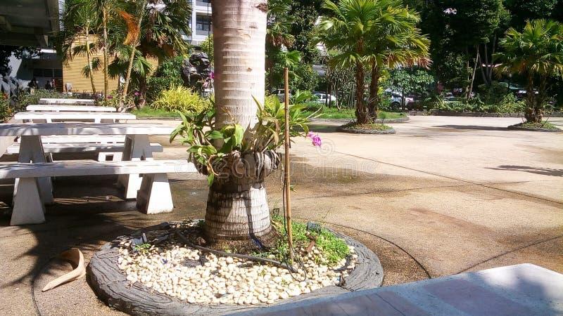 парк малый стоковое изображение