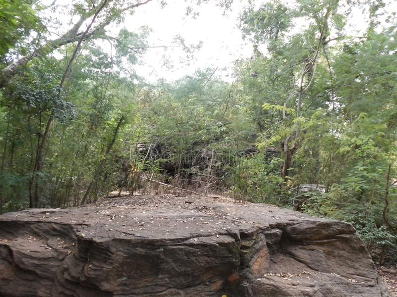 Парк на Бамаке стоковые изображения