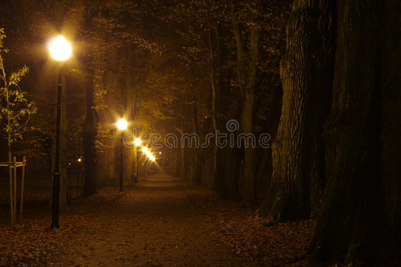 Парк на ноче стоковая фотография