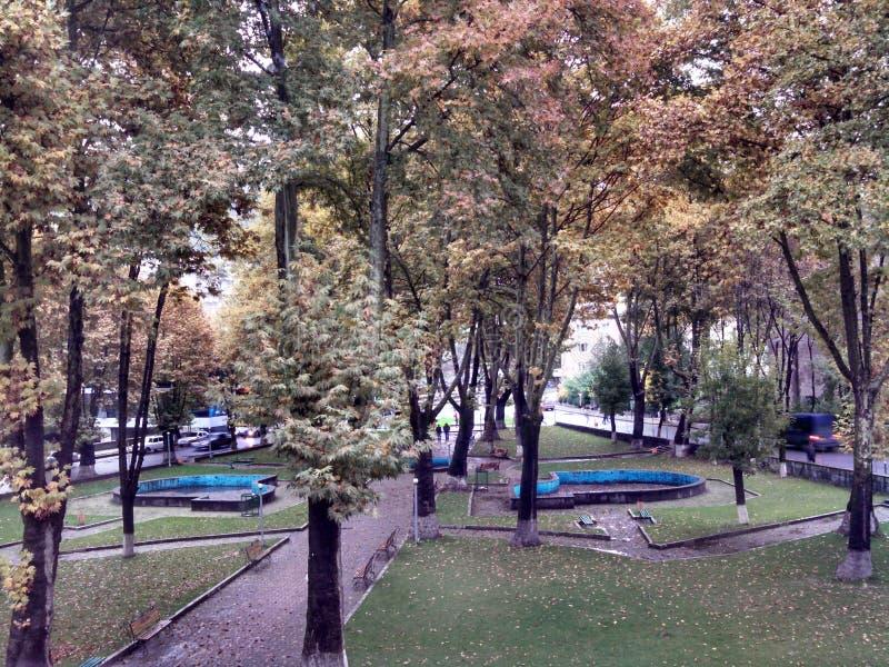Парк на приходя осени стоковая фотография