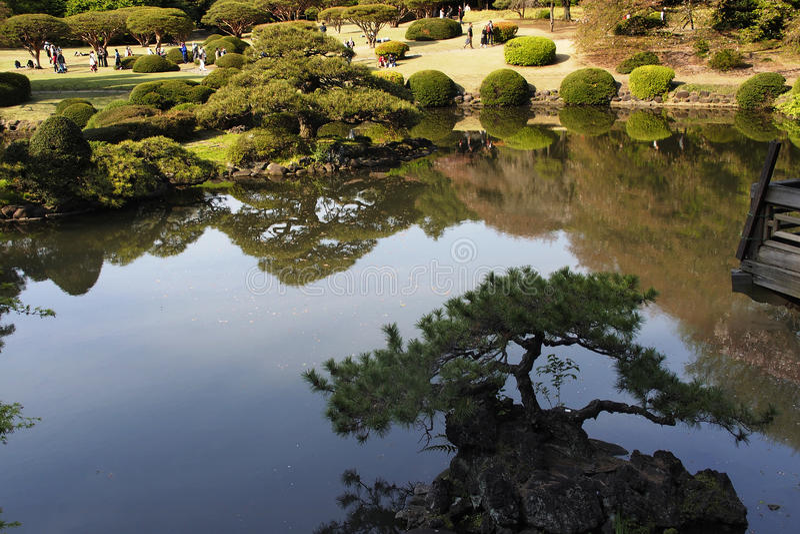 Парк на токио Японии стоковые фотографии rf