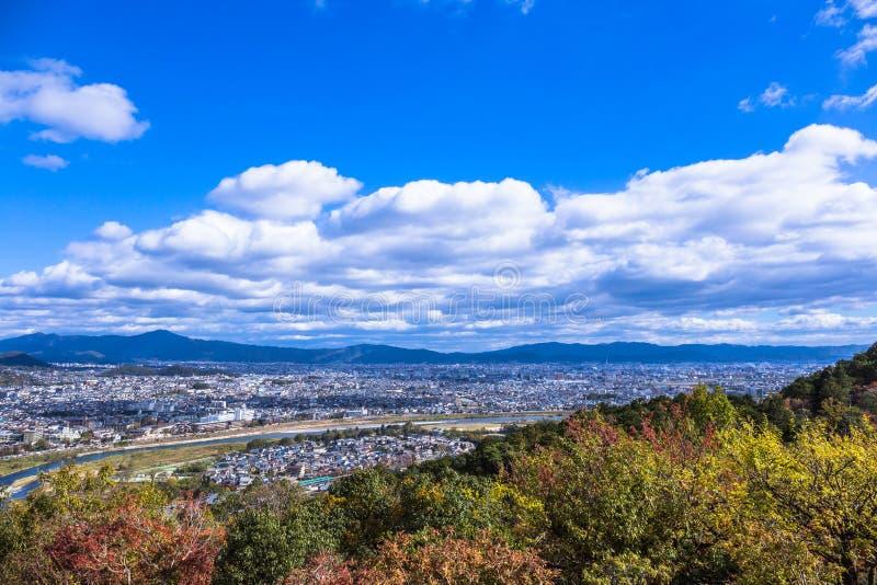 Парк обезьяны Iwatayama стоковая фотография