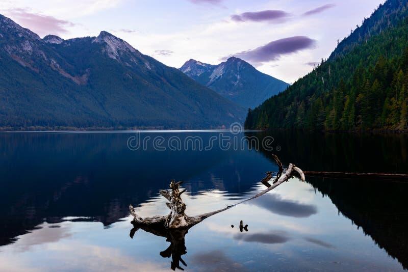 парк озера chilliwack захолустный стоковое изображение rf