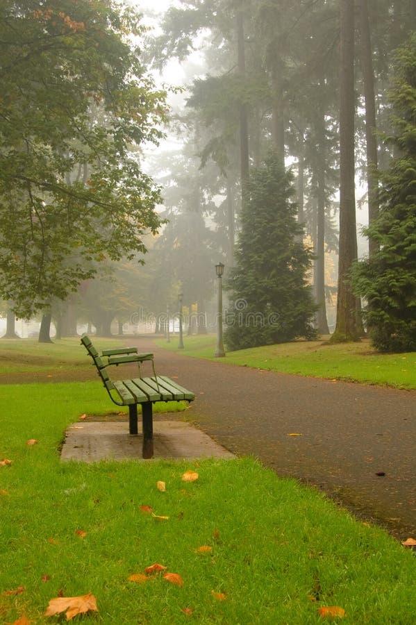 парк осени сценарный стоковое фото rf