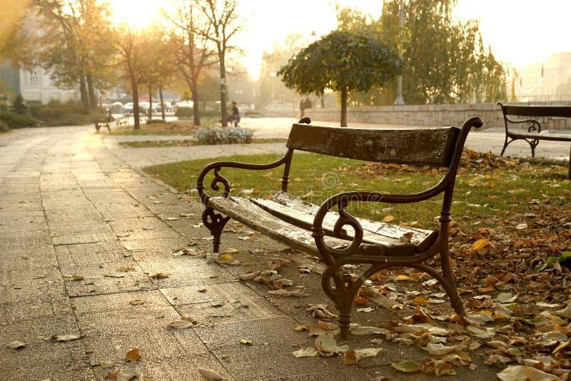 Download парк осени стоковое фото. изображение насчитывающей стул - 478506