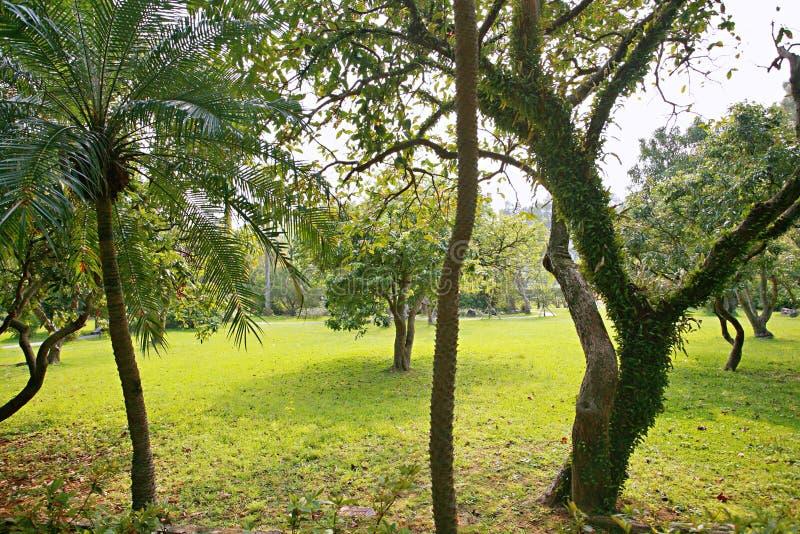 Парк официальной резиденции Shilin стоковое изображение rf