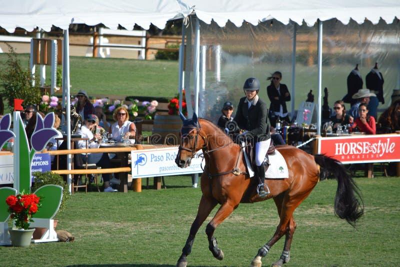 Парк лошади Paso Robles скача Grand Prix стоковое изображение