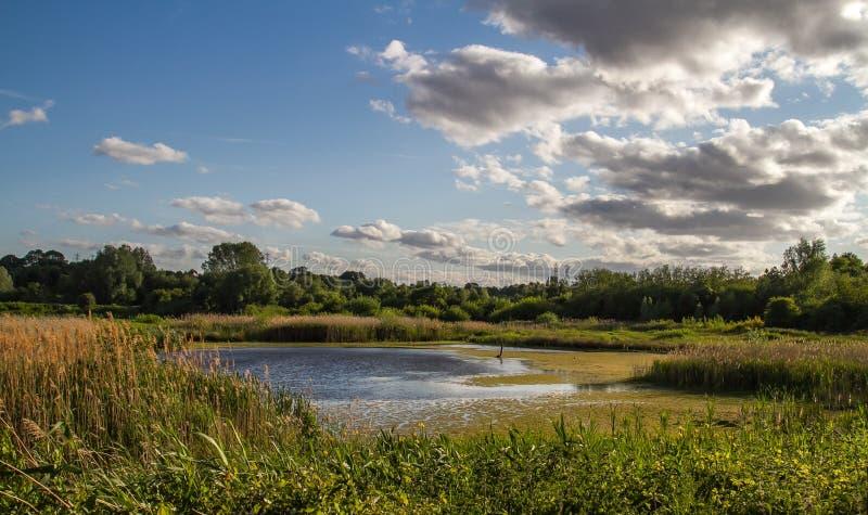 Парк долины Sanwell стоковое фото
