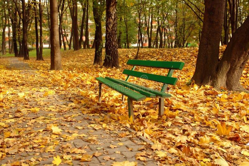 Download парк падения стенда стоковое фото. изображение насчитывающей цветы - 6864358