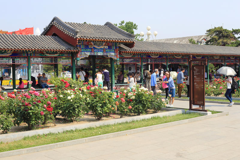 Парк Пекина ZhongShan стоковая фотография rf