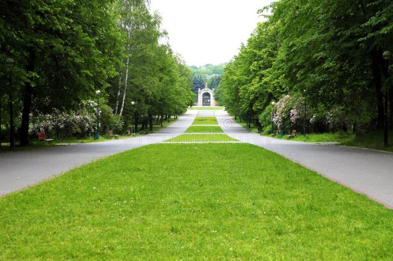 парк переулка стоковое фото