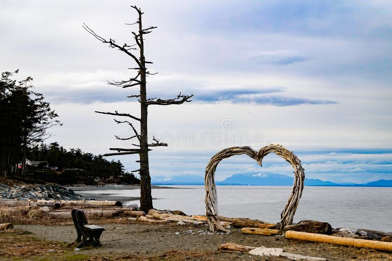 Парк пляжа рода захолустный, остров ~Vancouver Comox, ДО РОЖДЕСТВА ХРИСТОВА, Канада стоковое фото
