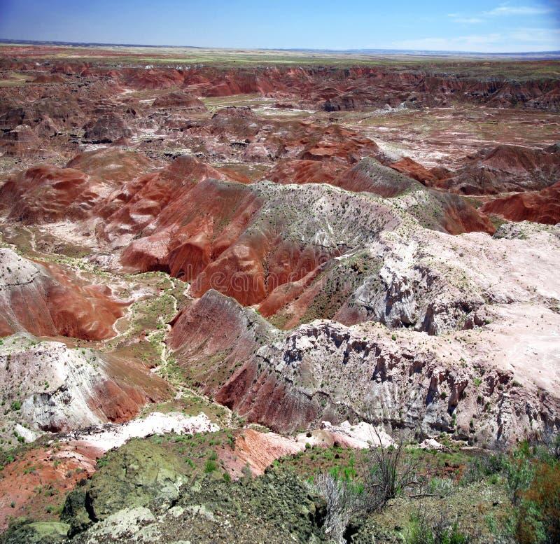 парк пустыни Аризоны национальный покрашенный стоковые фотографии rf