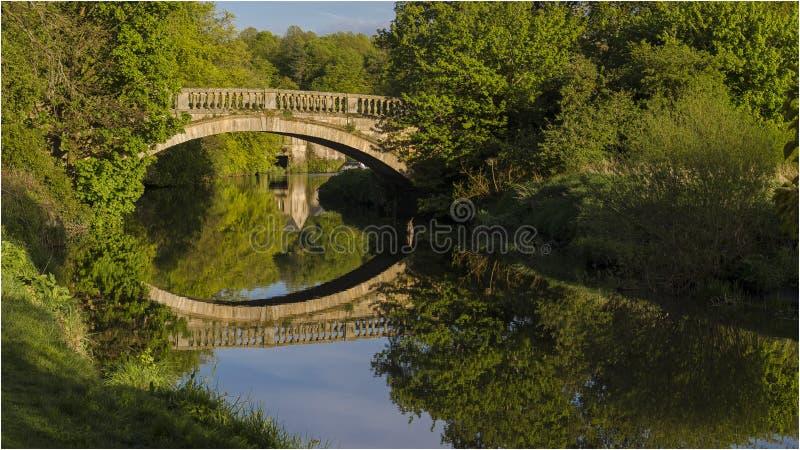 Парк страны Pollok - Глазго стоковая фотография