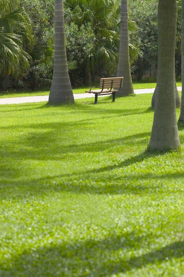парк стула пустой стоковые изображения rf