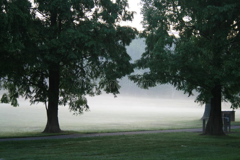 парк тумана стоковое изображение