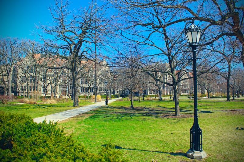 Парк университета Чикаго стоковая фотография