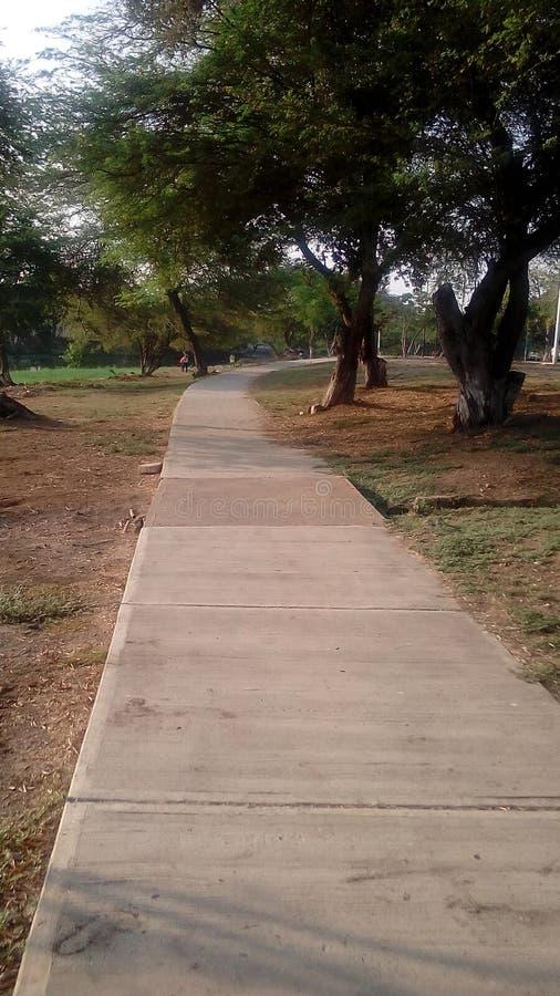 Парк фитнеса стоковая фотография
