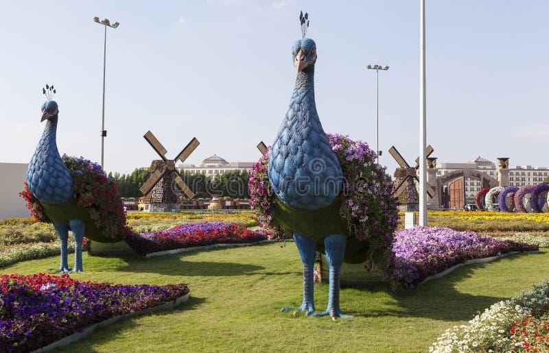 Парк цветка в Дубай (сад чуда Дубай) арабские соединенные эмираты стоковые изображения rf