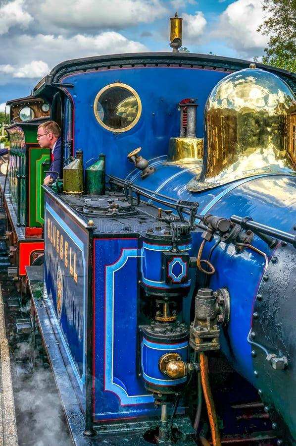 ПАРК ШЕФФИЛДА, ВОСТОЧНОЕ SUSSEX/UK - 8-ОЕ СЕНТЯБРЯ: Взгляд конца-Вверх  стоковые фото
