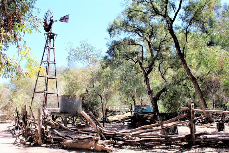 Парк штата дендропарка Boyce Томпсона, главный начальник, Аризона Соединенные Штаты стоковое фото