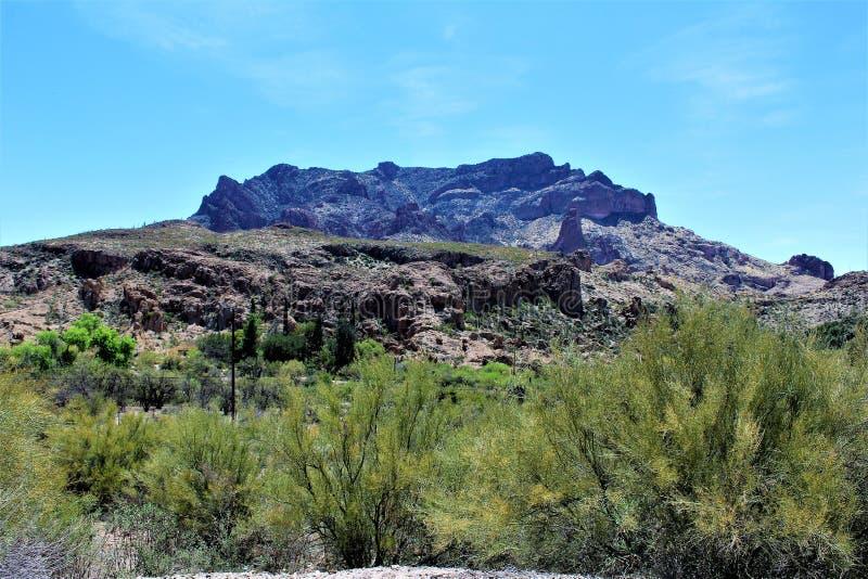 Парк штата дендропарка Boyce Томпсона, главный начальник, Аризона Соединенные Штаты стоковое изображение rf