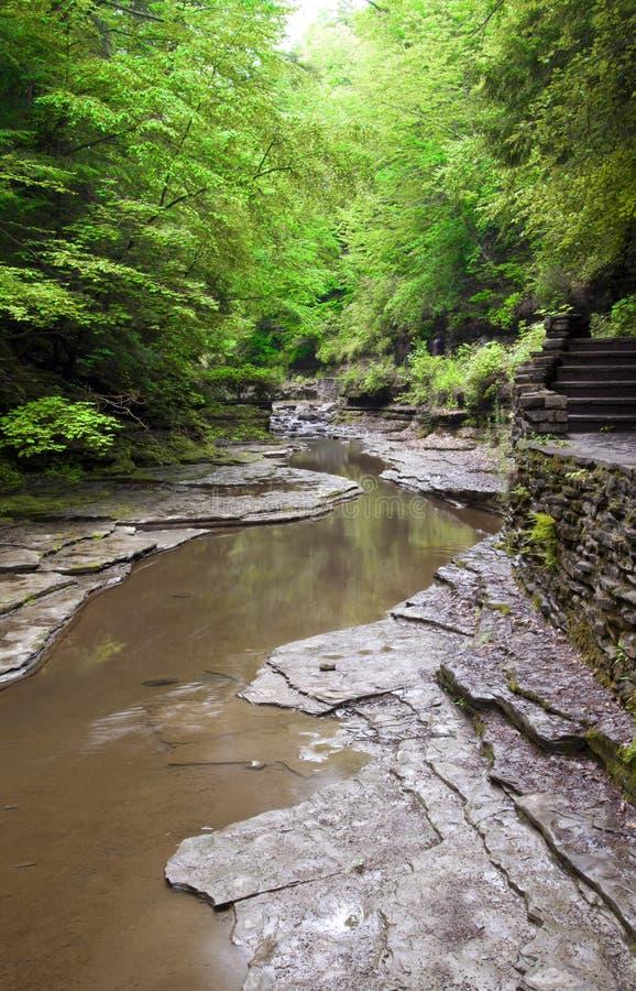 Парк штата Роберта H. Treman стоковое фото rf