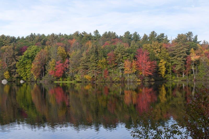 Парк штата Torrington Коннектикут пруда заусенца стоковое фото rf