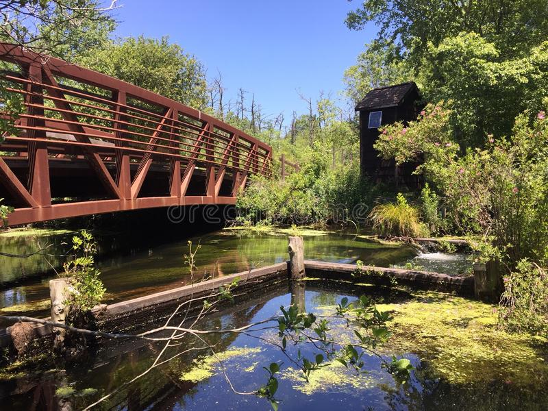 Парк штат Нью-Йорк Connetquot моста Bunce стоковая фотография rf