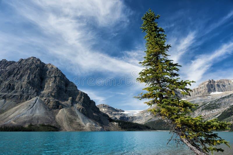 Парк яшмы Yoho Banff хайвея Icefield стоковая фотография