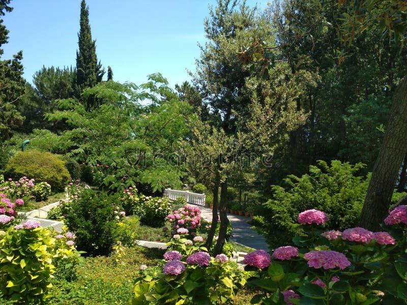Парк Aivazovsky в Крыме стоковое изображение