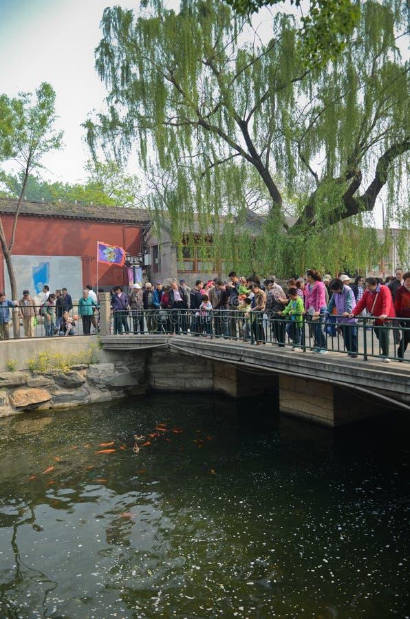 Парк Beihai, Пекин стоковые фото
