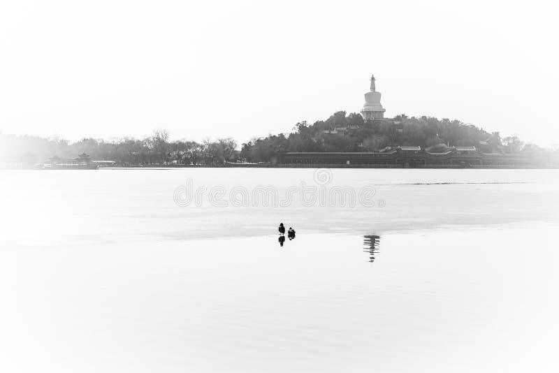 Парк Beihai стоковая фотография