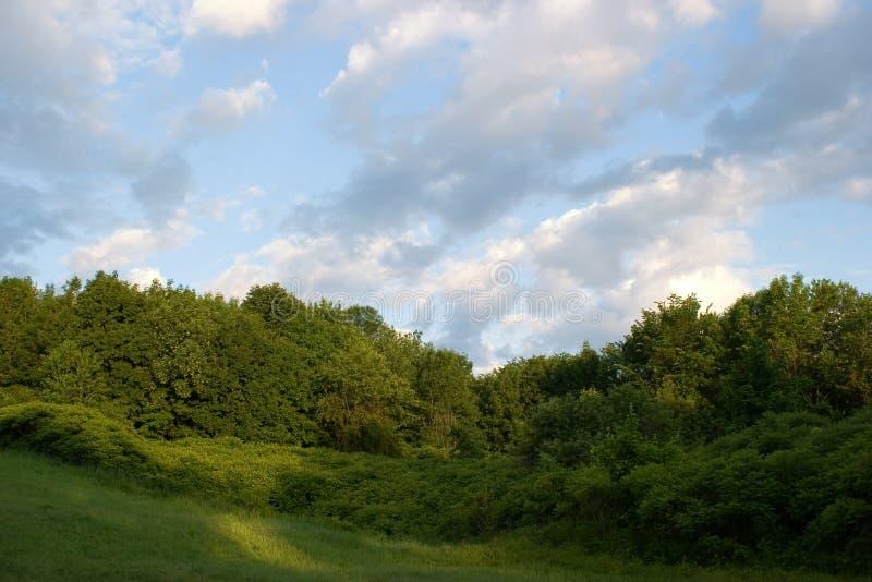 парк bois de liesse стоковая фотография