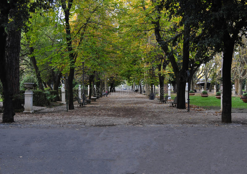 Парк Borghese виллы в Риме стоковые фотографии rf