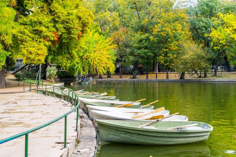 Парк Cismigiu стоковая фотография