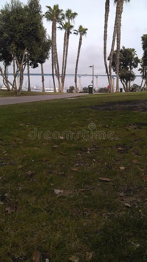 Парк Coronado стоковое изображение