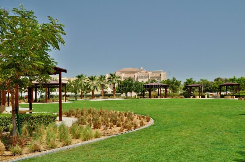Парк Delma в области Абу-Даби зеленой плоской стоковые изображения rf